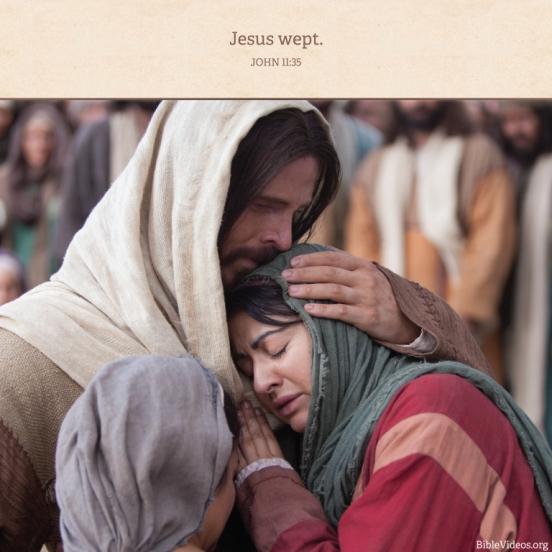 meme-bible-john-jesus-wept-1341989-tablet
